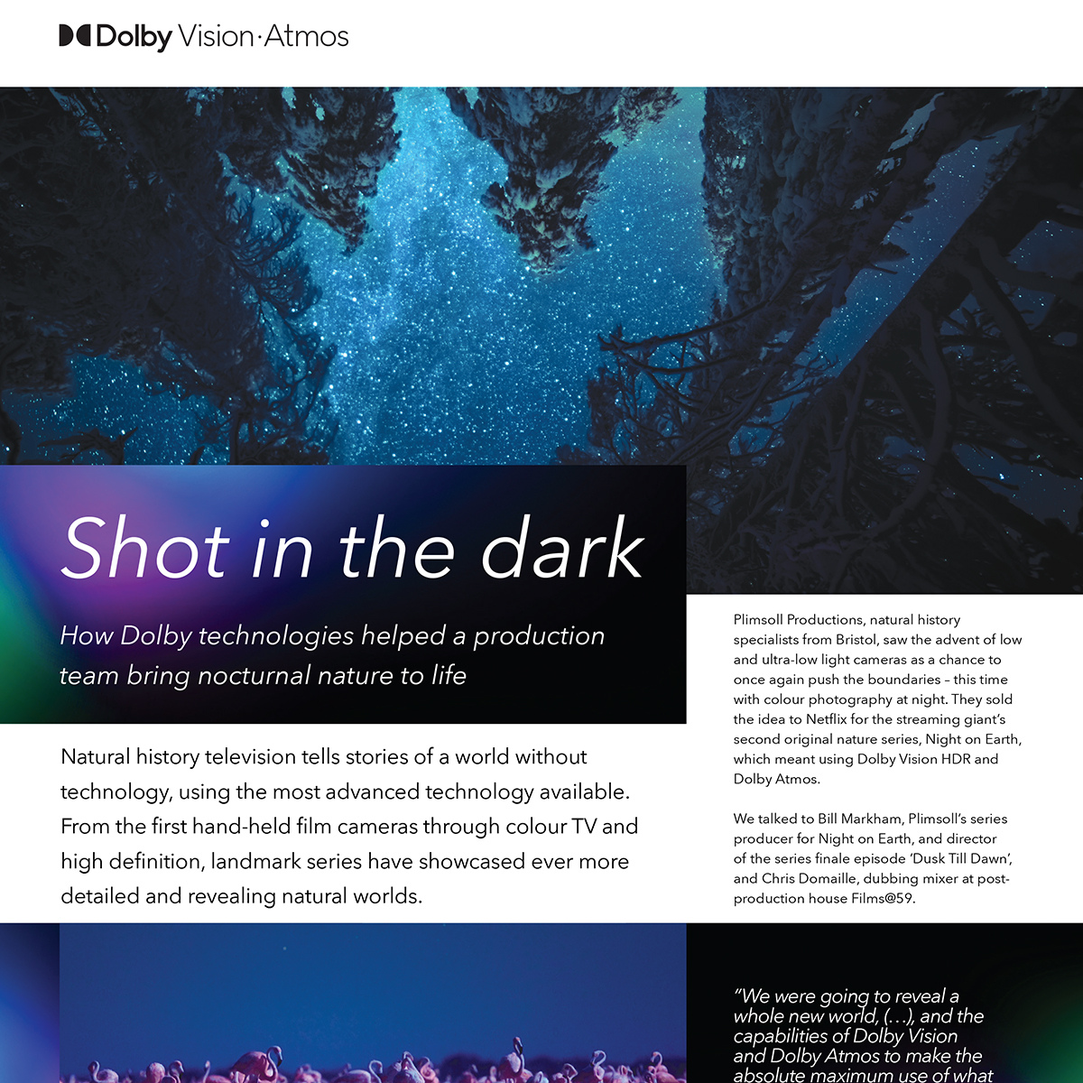 Dolby Vision Atmos Case Study